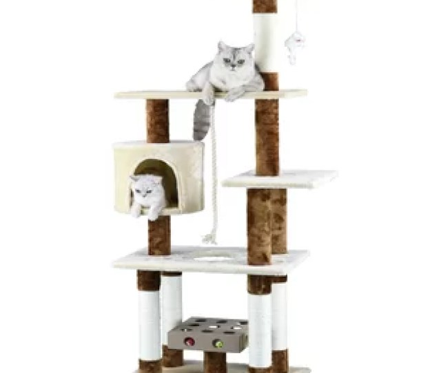Iq Box Cat Tree