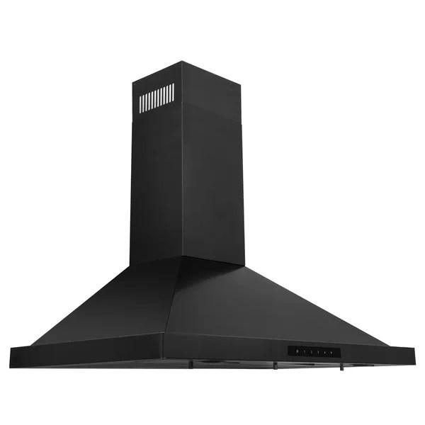black stainless steel hood