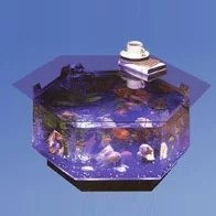 claire 40 gallons octagon fish tank coffee table