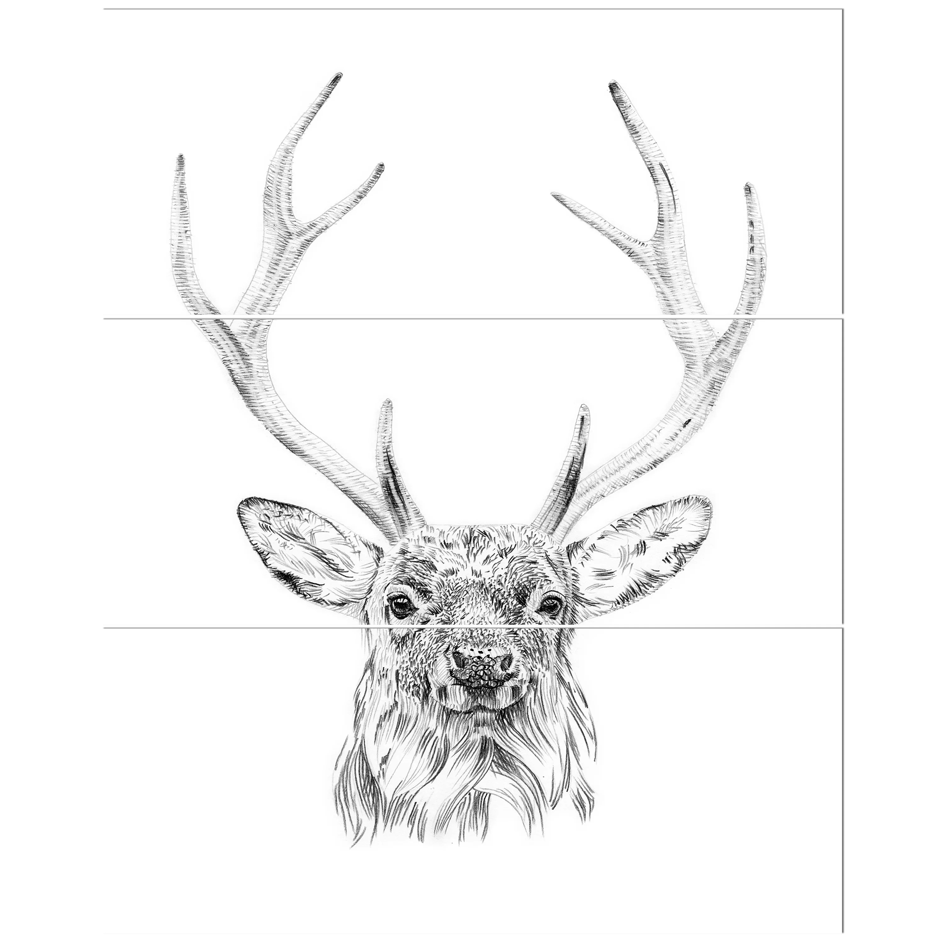 East Urban Home Pencil Deer Sketch In Black And White Drawing Print Multi Piece Image On Canvas Wayfair