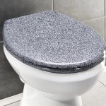 Belfry Bathroom Ottana Elongated Toilet Seat Reviews Wayfair Co Uk
