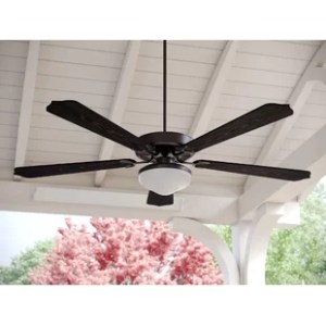 Ceiling Fans You ll Love   Wayfair Save