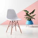 Desk Chairs Computer Chairs You Ll Love In 2020 Wayfair
