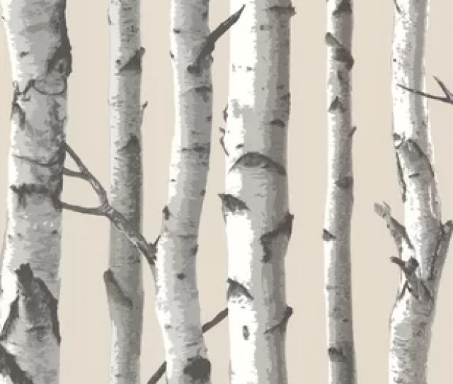 Echo Lake Lodge   Tuxbury Birch Tree Wallpaper Roll