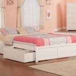 Beachcrest Home Alayah Queen Storage Platform Bed Reviews Wayfair