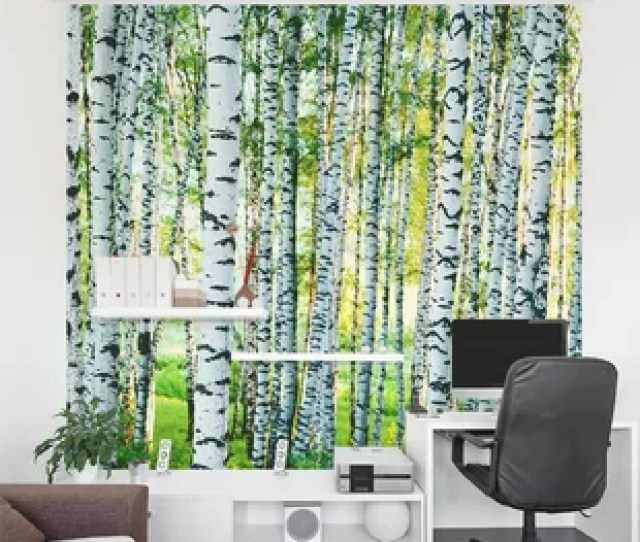 Spring Birch Tree Forest   Piece Wall Mural