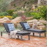 Brice Chaise Lounge With Cushion Reviews