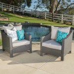 Sol 72 Outdoor Portola Patio Chair With Cushion Reviews