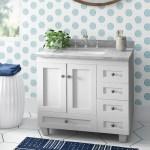 Eviva Acclaim Caroline 30 Single Bathroom Vanity Set Reviews