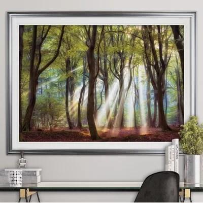 Framed Art Youll Love Wayfair
