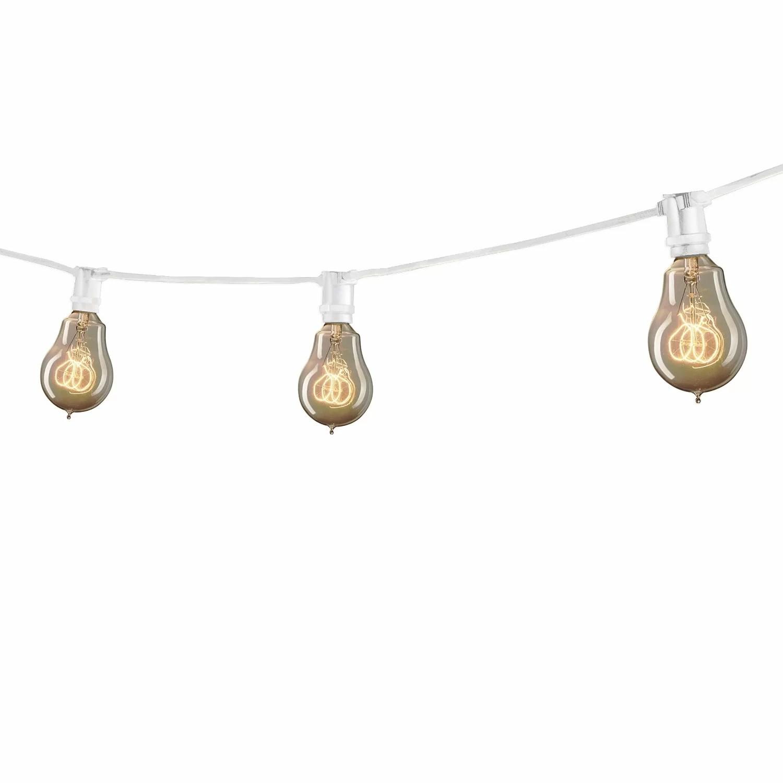 Globe String Lights Amp Reviews