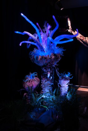 Bioluminescent Flora Details Coming to Pandora – The World of AVATAR at Disney's Animal Kingdom
