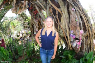 Stunning Photo Opportunities in Pandora – The World of Avatar