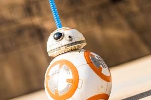 BB-8 Sipper at Disney's Hollywood Studios