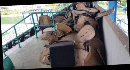 Vandalised seats at the swimming pool complex 0 - Shame Of June 12 Democracy Day: Grass Takes Over $360m MKO Abiola Stadium