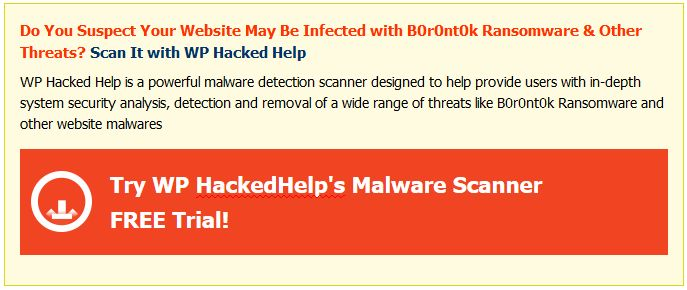 B0r0nt0k Ransomware Removal Website