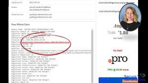 Domain Registration Information