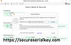 Stellar Data Recovery Professional 10.0.0.3 Crack & Activation Key 2020