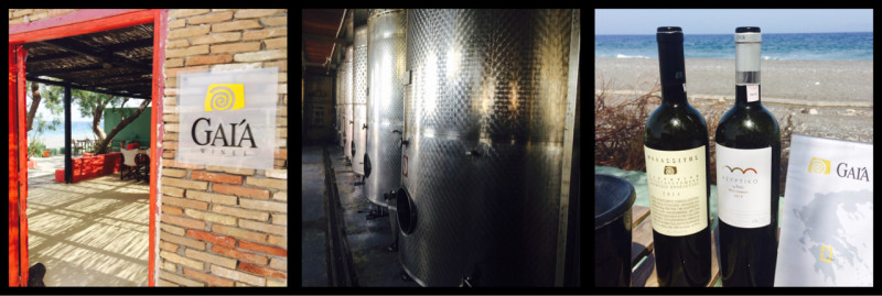 Inside Gaia Wines Thera Santorini Greece