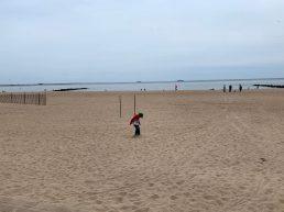 Store strande, der bliver renset dagligt.