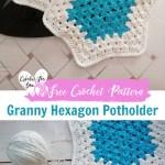 Crochet Granny Hexagon Potholder Free Pattern Crochet For You