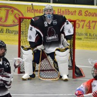 MSL: Kodiaks a surprise entry in league's top three teams