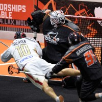 NLL: Wings take control of East Division with win over Wolves