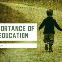 The Importance of SEL to Education Success