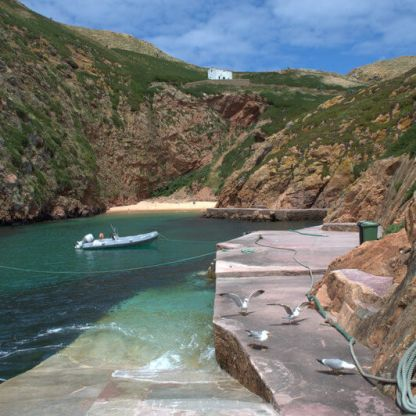 Brave the waves to explore the Berlenga island nature reserve