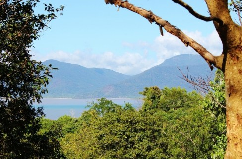 Blue Arrow Trail viewpoint on Mount Whitfield in Cairns, Australia