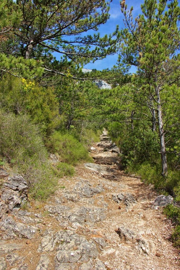 Rocky trail, Vidova Gora, Bol, Brac, Croatia