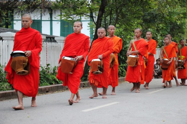 Monks walk barefoot in a line through the streets of Luang Prabang, Laos for morning almsgiving