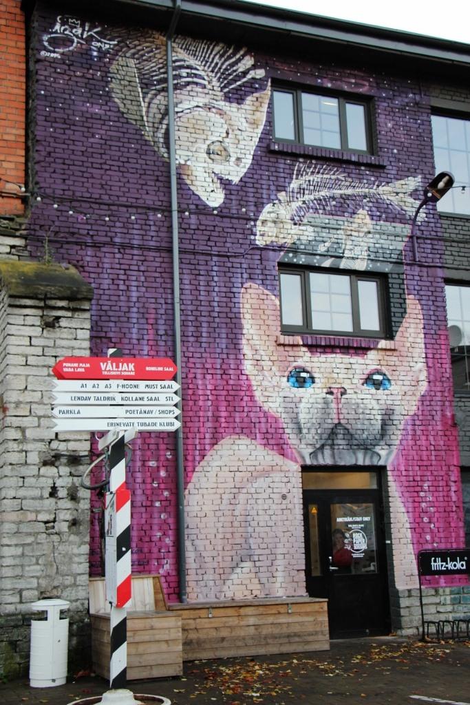 Cat and Fish street art mural at Telliskivi Creative Hub in Tallinn, Estonia