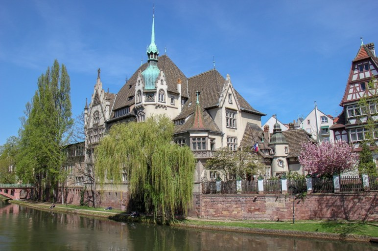 Weeping Willow and beautiful architecture on Ile River in Strasbourg, France