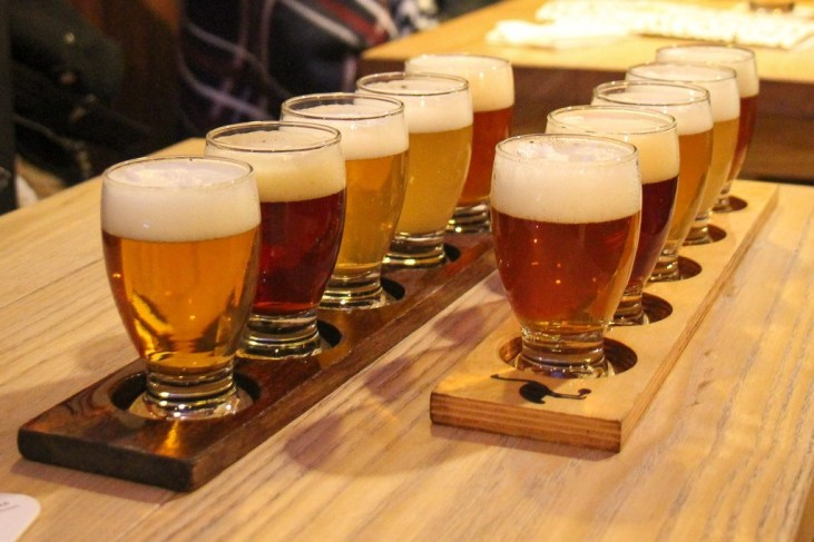 Try all the beer at Tasting Board, Brouwerij 't IJ Amsterdam