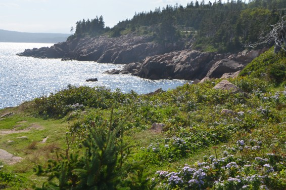 And the vegetation along the shore appropriately hearty.