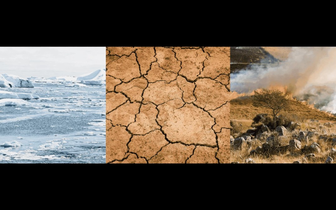 Climate Coalitions – A QuickLook at Global Alliances