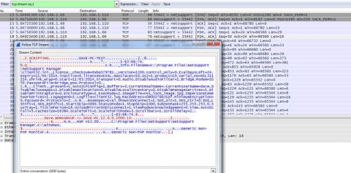 NetSupport vulnerability