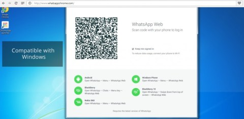 fake whatsapp for web spams