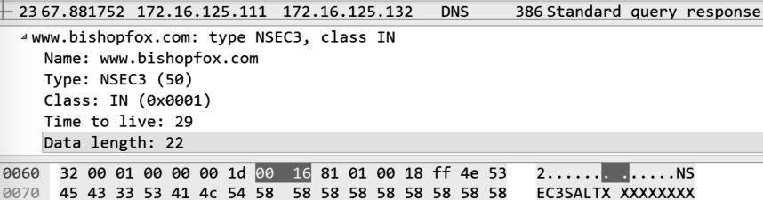 DNSSEC flaws