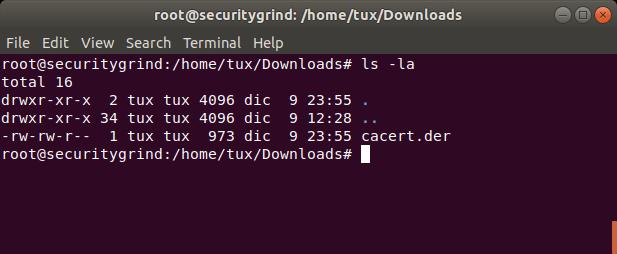 SSL pinning bypass with frida-gadget (gadget-injector py