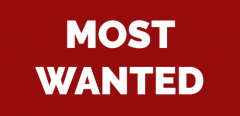 SMMag-Most-Wanted-Banner-1