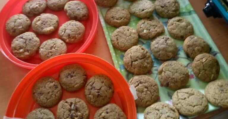producing and selling drug cookies to school children