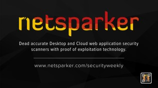 NetSparker New Ad Read