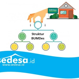Contoh Struktur BUMDes beserta penjelasan Jobdeskripsi