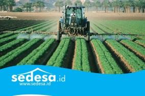 Potensi Pertanian Desa Di Era Industri 4.0