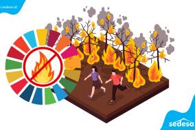 Berita SDGs Desa Gus Mentri Desa