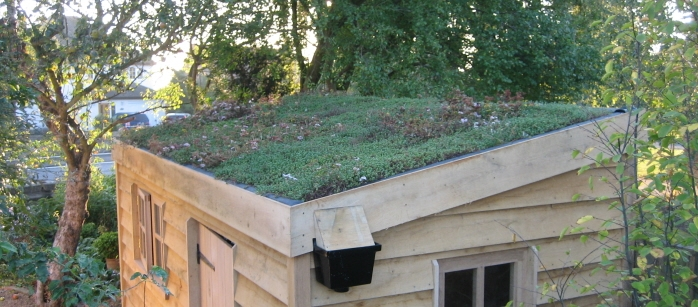 how to build a living roof
