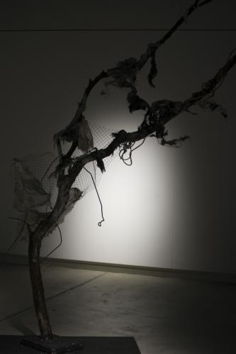 Baum des Todes im Schatten