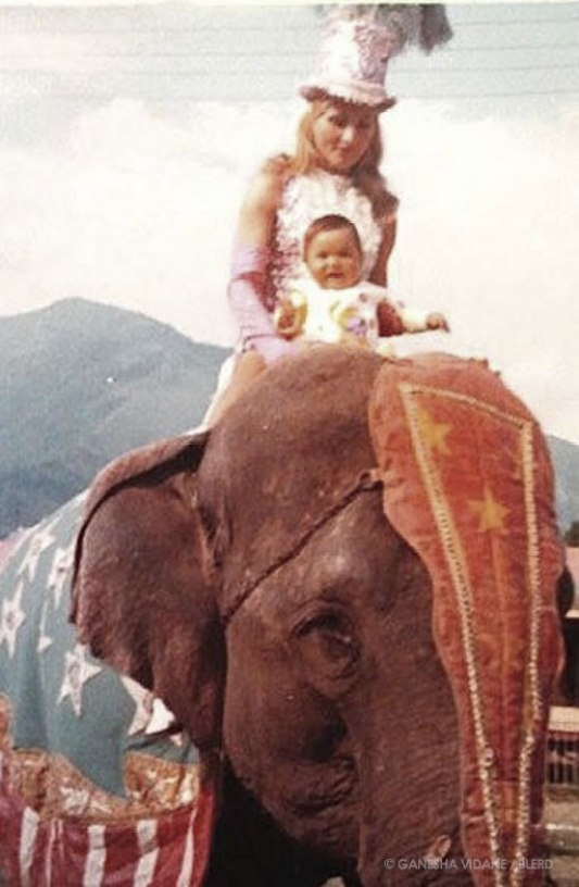 Baby Ganesha and her mother atop a circus elephant